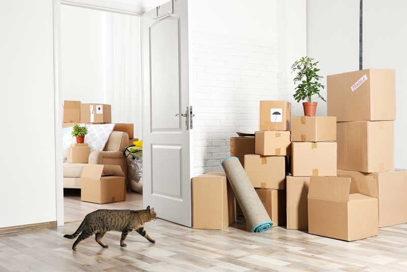 how to pack furniture when moving