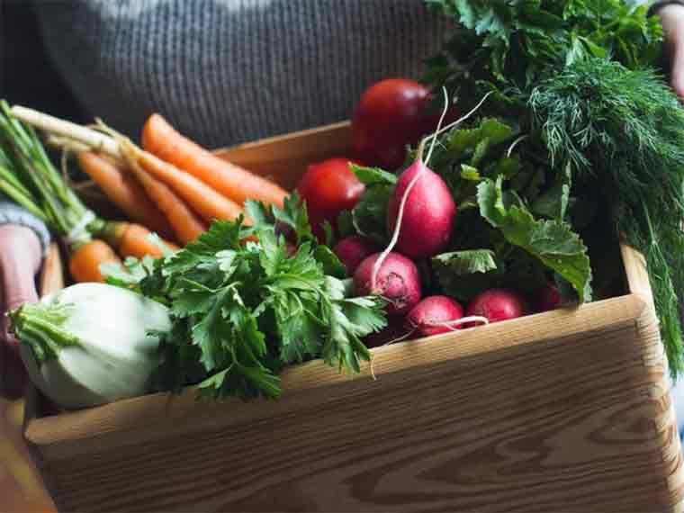 Maintain health and wellness