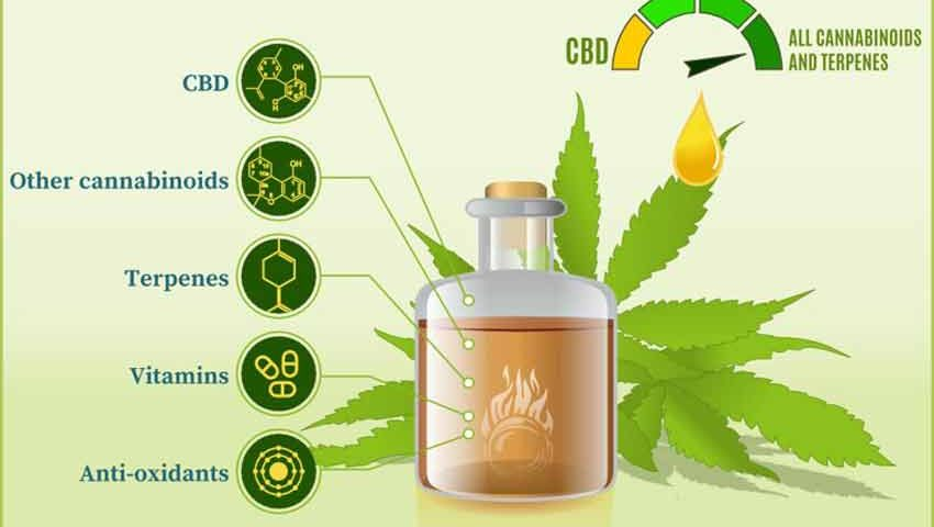 Does CBD Oil Settle Your Stomach