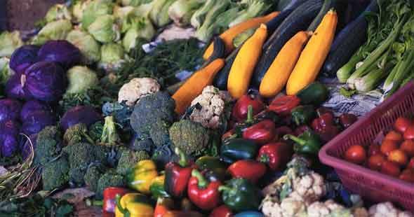 How to follow a low fiber diet