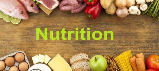 Can Different Kinds of Nutrition play an Important Role