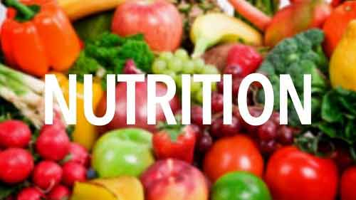 Why nutrition is significant