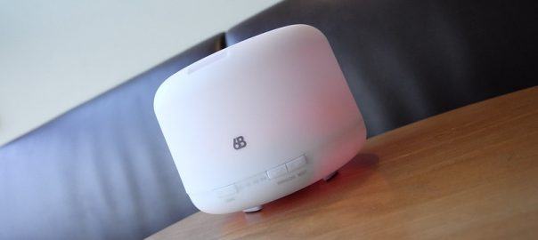 what does a home humidifier does