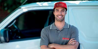 What are the processes that are done in the man and van service