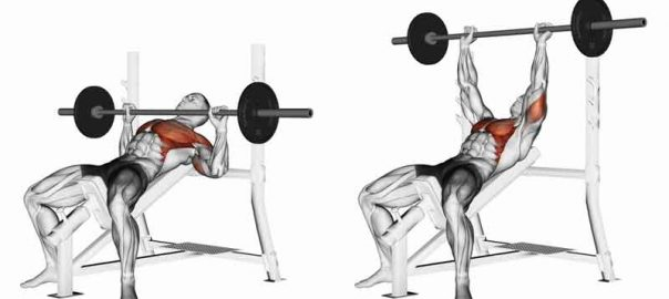 How to Warm up for Max Bench