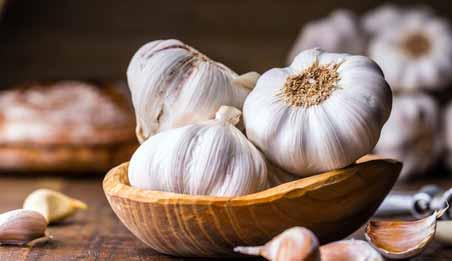 How Does Garlic Fight Mercury