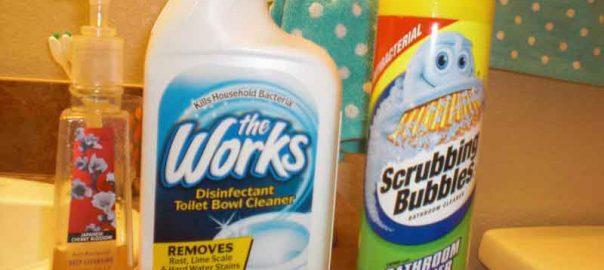 DG Home Disinfectant Toilet Bowl Cleaner