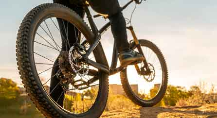 How to Survive with Only Your Bike
