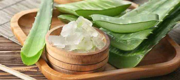 Using Aloe Vera for Anti-Aging Purposes